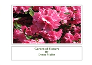 Garden of Flowers cover image