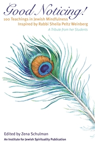 Good Noticing: 100 Teachin ... cover image