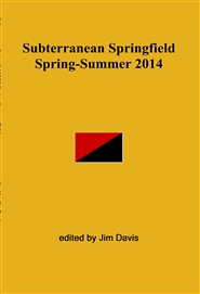 Subterranean Springfield Spring-Summer 2014 cover image
