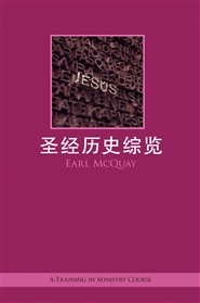 A Panorama of the Bible (S*Chinese) cover image