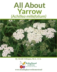 All About Yarrow cover image