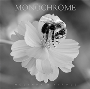 Monochrome cover image