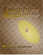 American Bughouse / Left w ... cover image