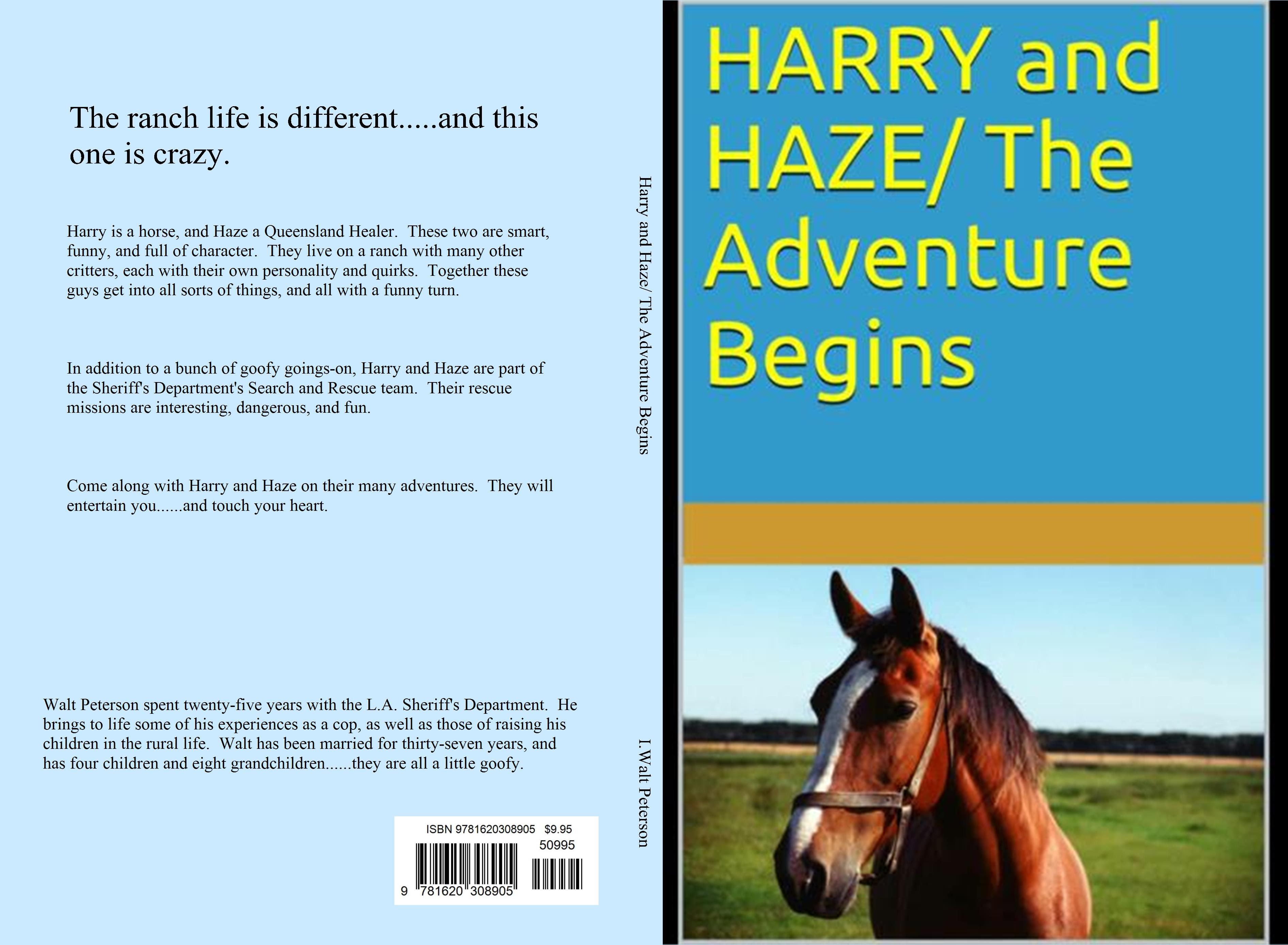 Harry and Haze/ The Adventure Begins cover image