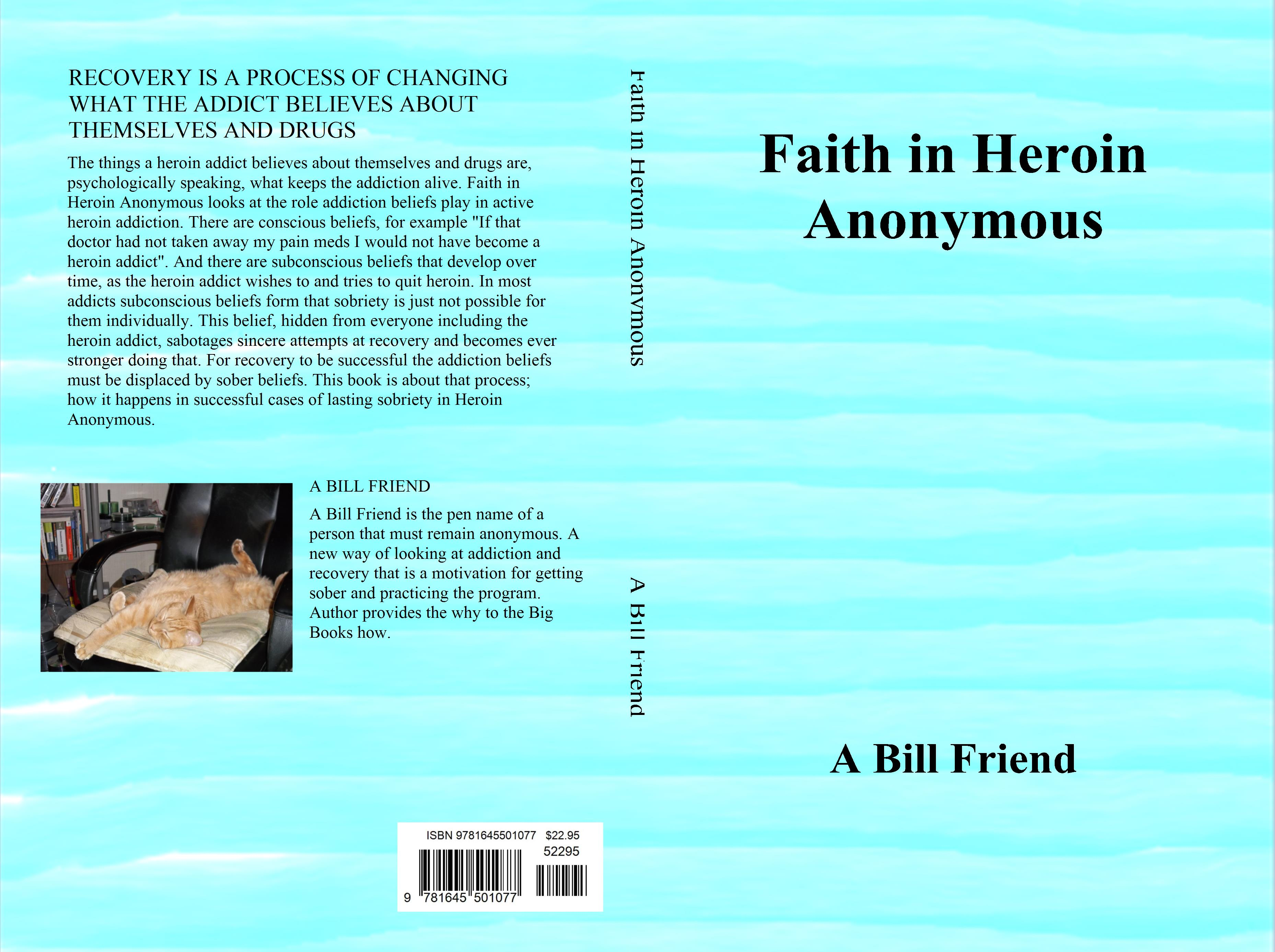 Faith in Heroin Anonymous cover image