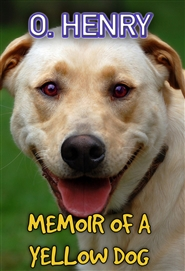 Memoir of a Yellow Dog cover image