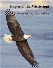 Eagles of the Mississippi cover image