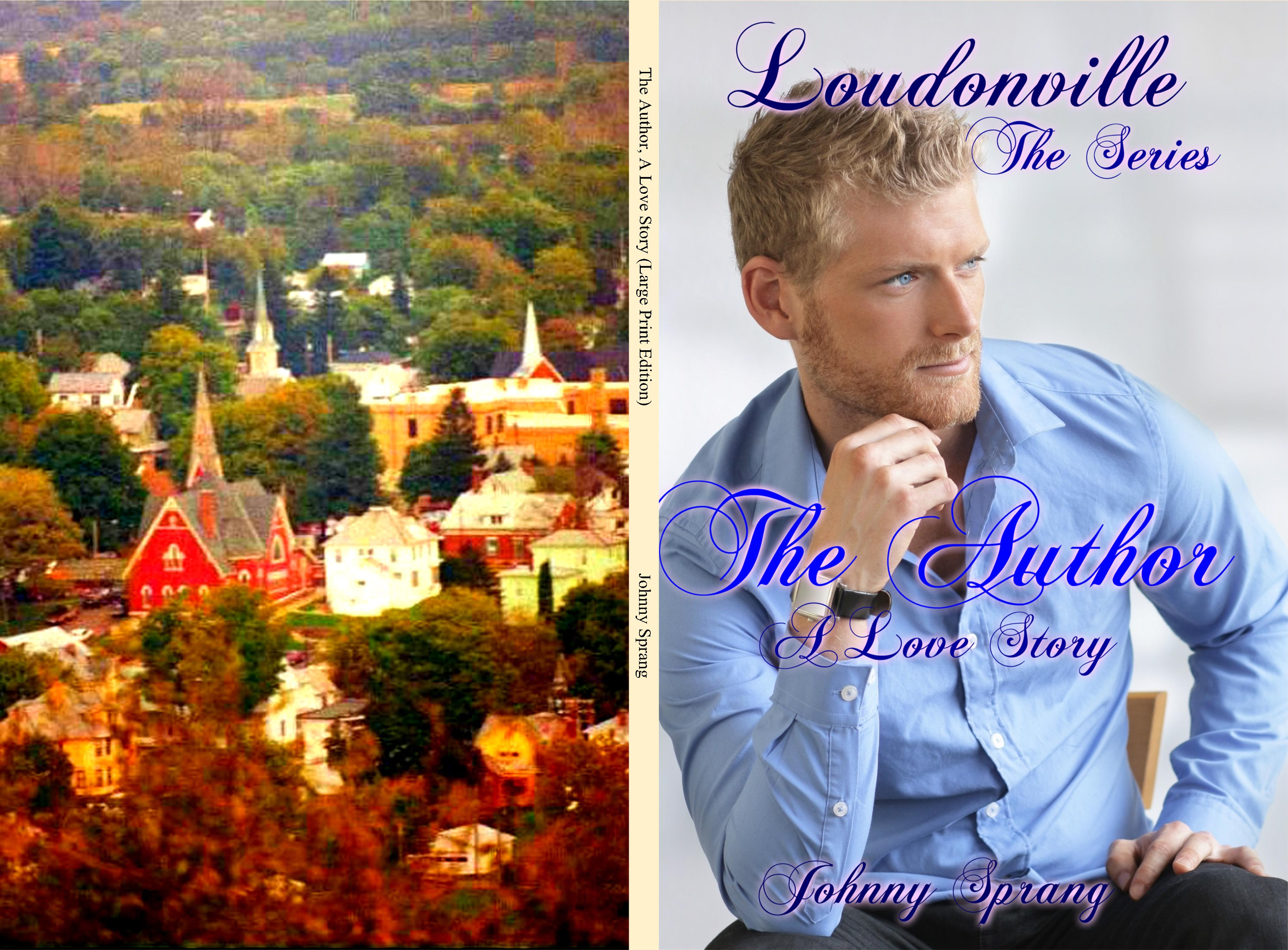 The Author, A Love Story (Large Print Edition) cover image