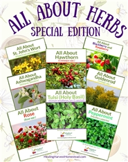 All About Herbs Special Edition #1 cover image