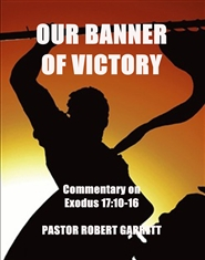 OUR BANNER OF VICTORY cover image