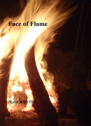 Face of Flame cover image