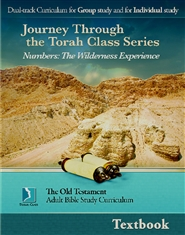 Numbers: The Wilderness Experience, Adult Textbook cover image
