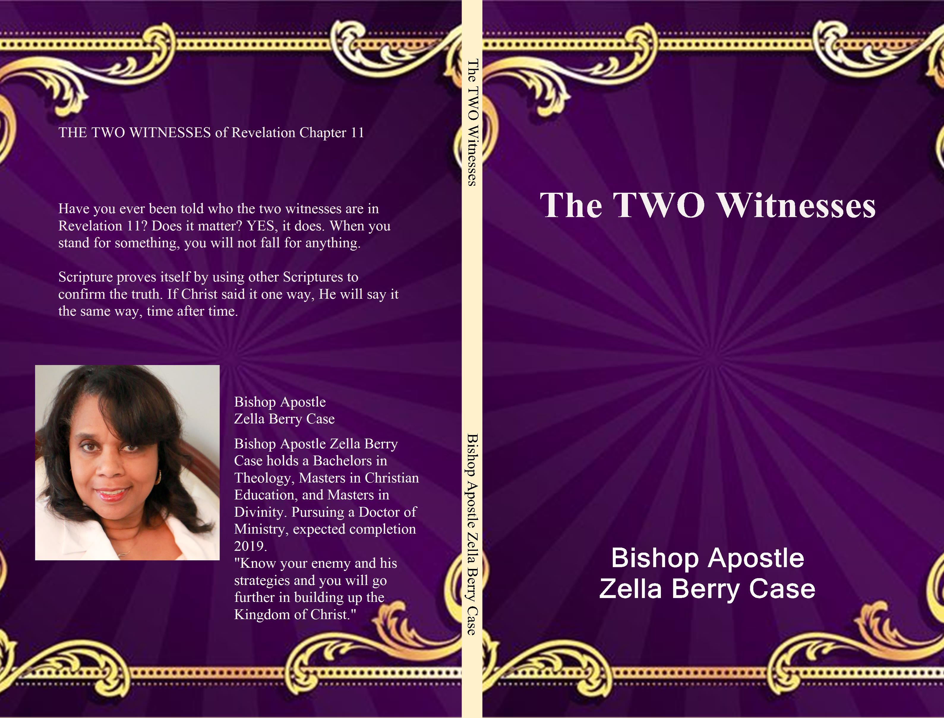 The TWO Witnesses cover image