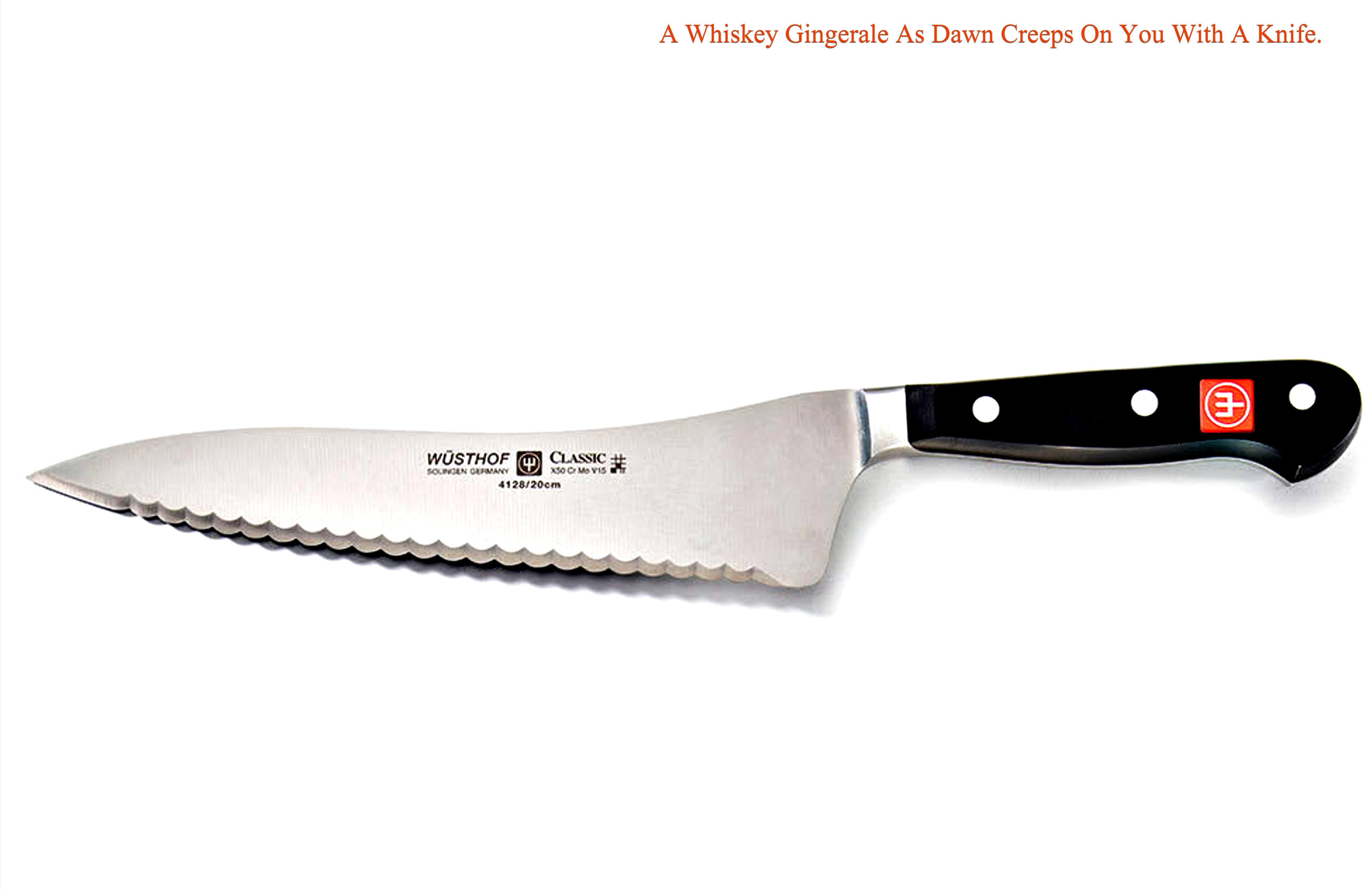 A Whiskey Gingerale As Dawn Creeps On You With A Knife cover image