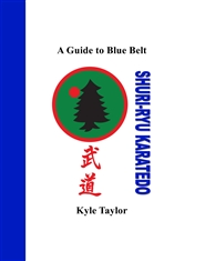 A Guide to Blue Belt cover image
