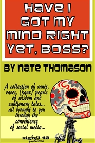 Have I Got My Mind Right Yet, Boss? cover image