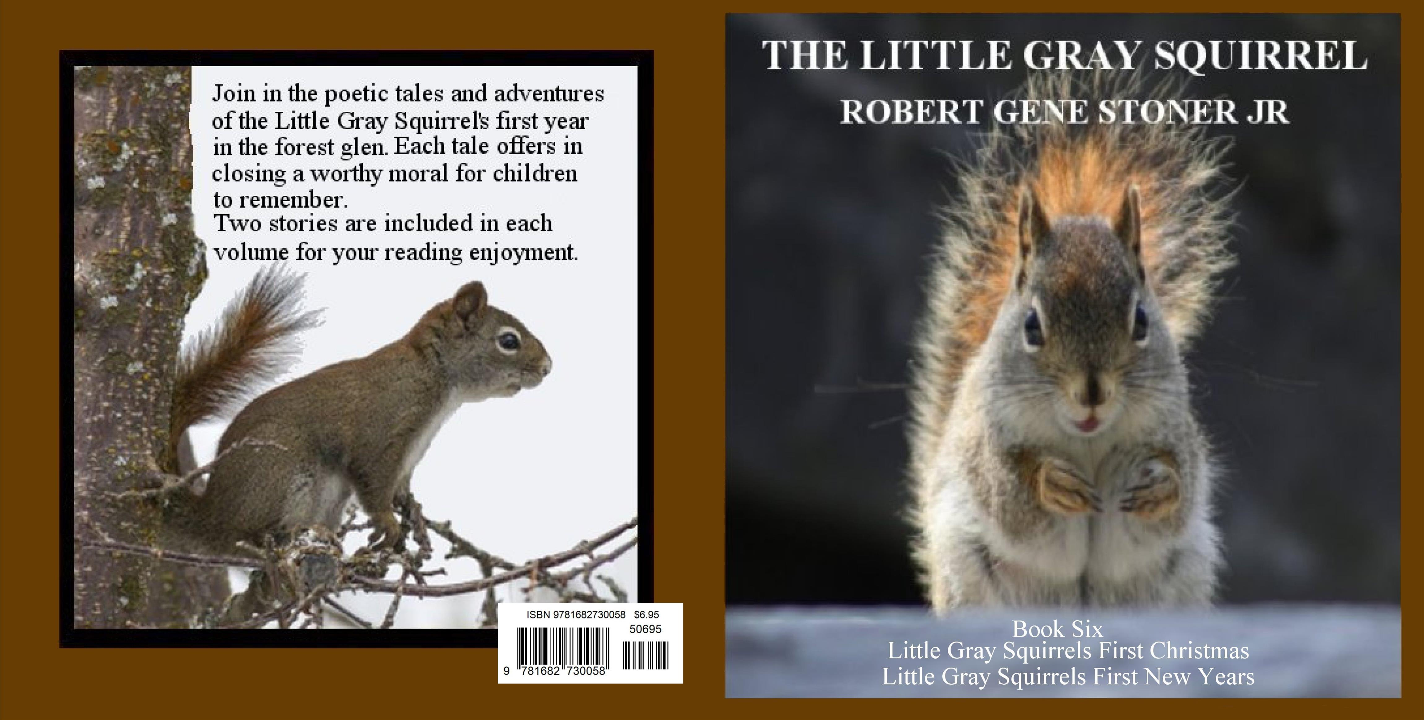 Little Gray Squirrel - Book Six cover image