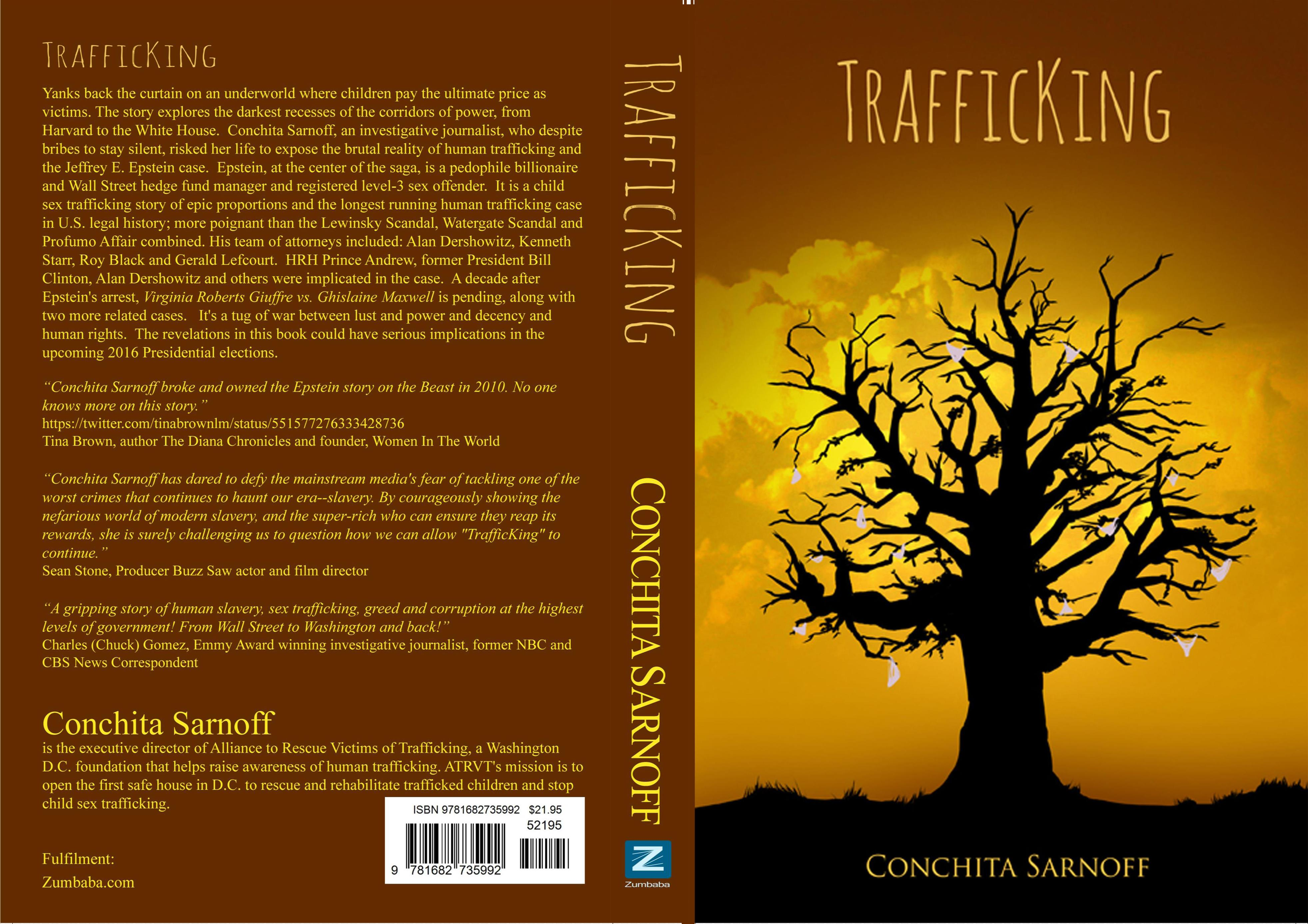 TrafficKing cover image