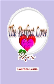 The Perfect Love cover image