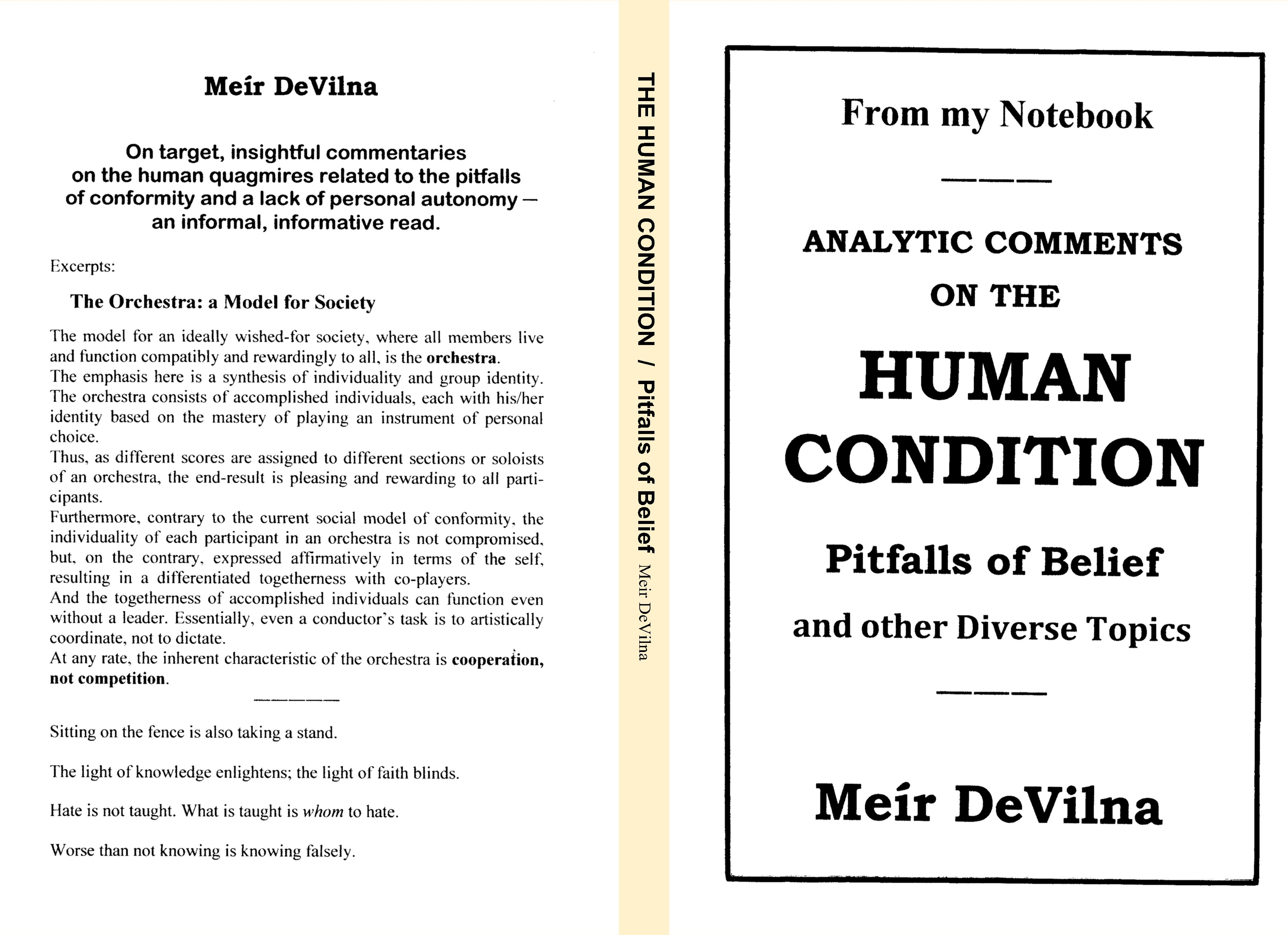 From my Notebook Analytic Comments on the Human Condition Pitfalls of Belief cover image