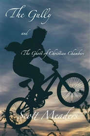 The Gully & The Ghost of Christian Chambers cover image
