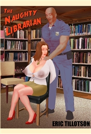 The Naughty Librarian cover image