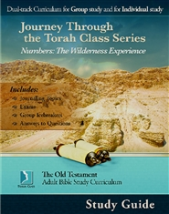 Numbers: The Wilderness Experience, Adult Study Guide cover image