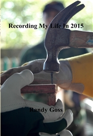 Recording My Life In 2015 cover image