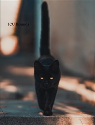 Veterinary Technician ICU rounds - cat cover image