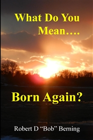 What Do You Mean...Born Again? cover image