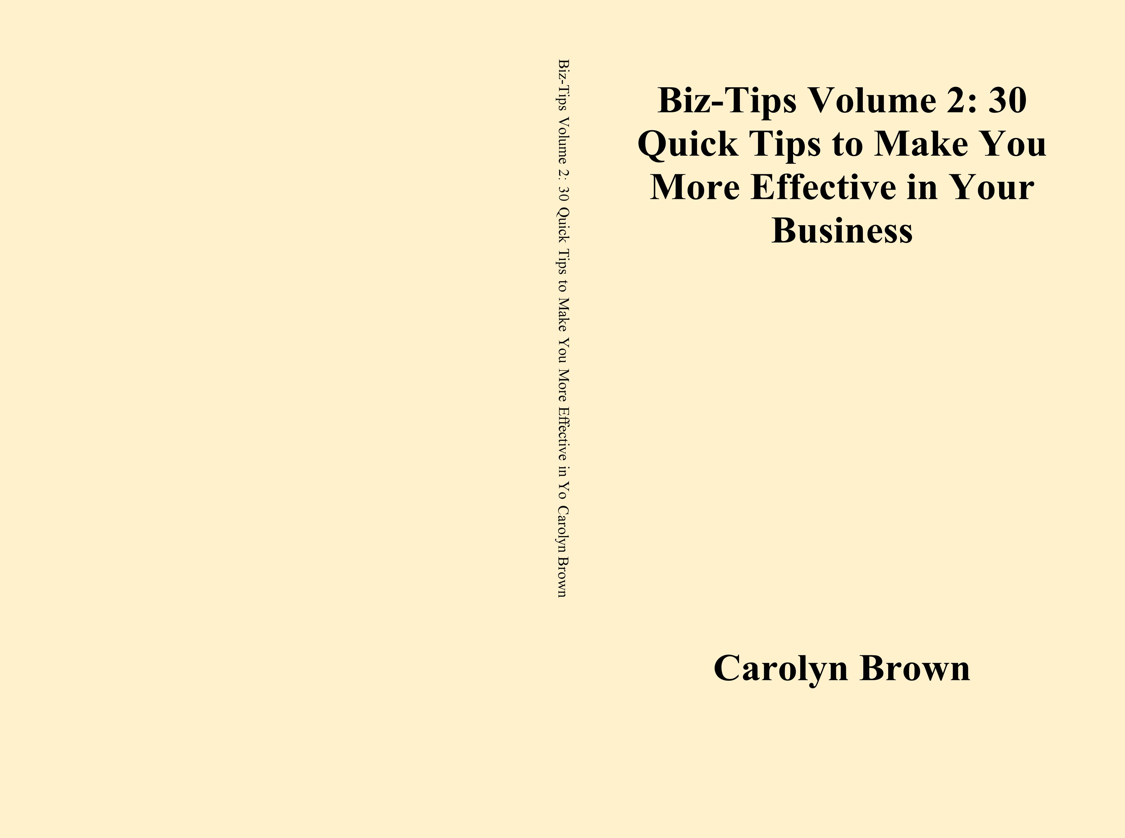 Biz-Tips Volume 2: 30 Quick Tips to Make You More Effective in Your Business cover image