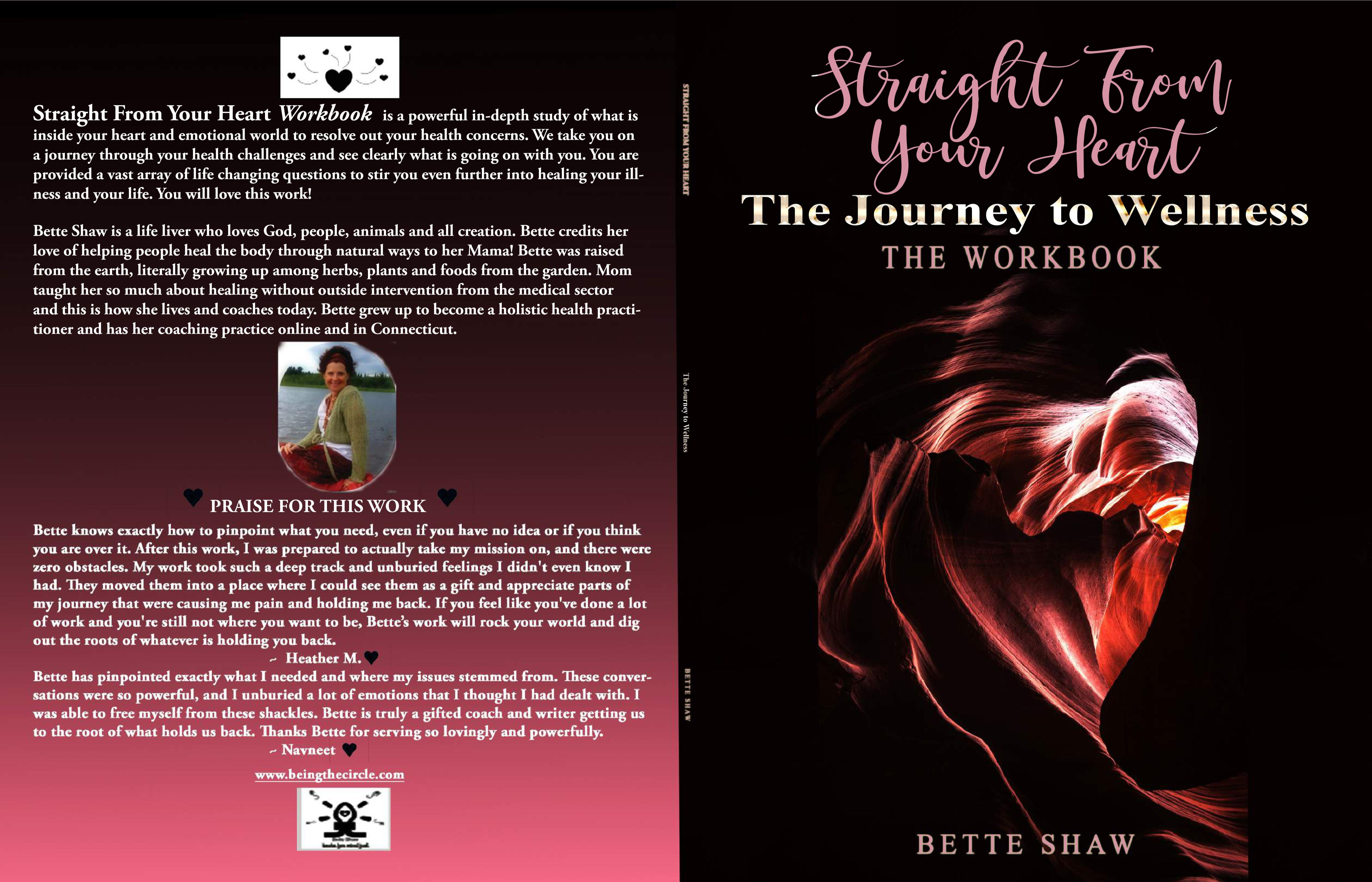 Straight From Your Heart-The Journey to Wellness-THE WORKBOOK cover image