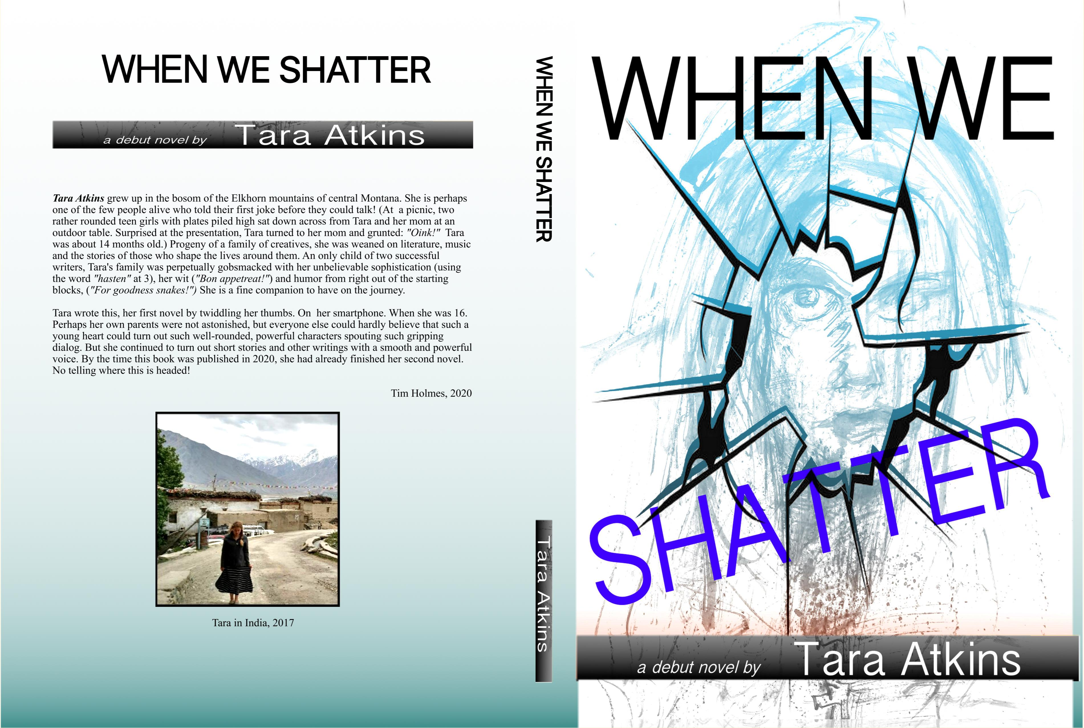 When We Shatter cover image