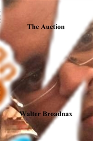The Auction cover image