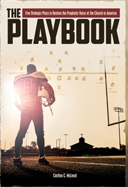 The Playbook cover image