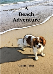 A Beach Adventure cover image